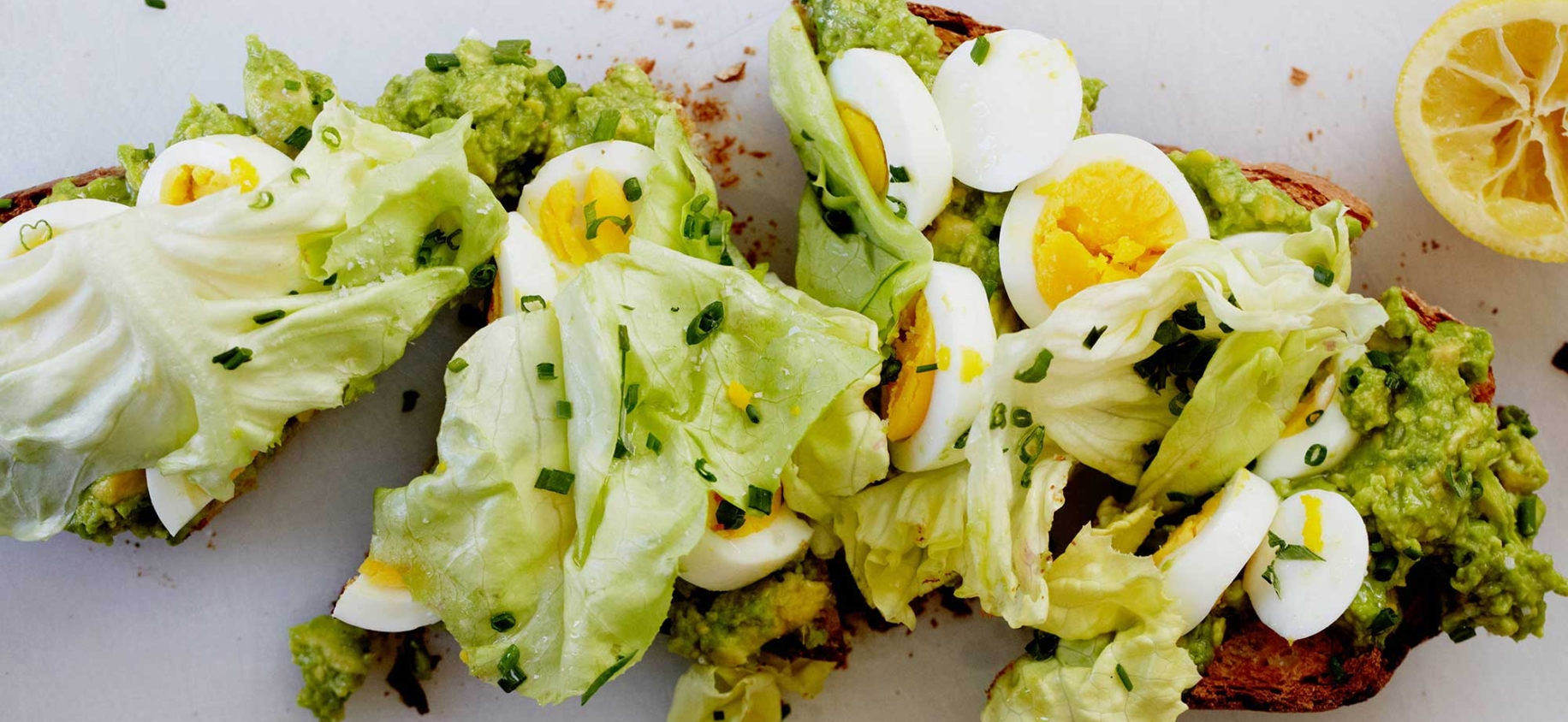 'huckleberry-cafe-avocado-toast' from the web at 'http://www.huckleberrycafe.com/wp-content/uploads/2016/11/Huckleberry-Cafe-Avocado-Toast-1832x844_c.jpg'